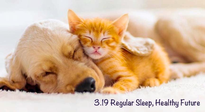 【益你節日】世界睡眠日😴
